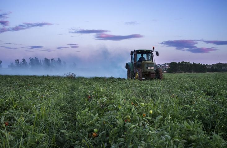 a-importancia-do-estudo-de-pragas-para-a-agricultura-sustentavel